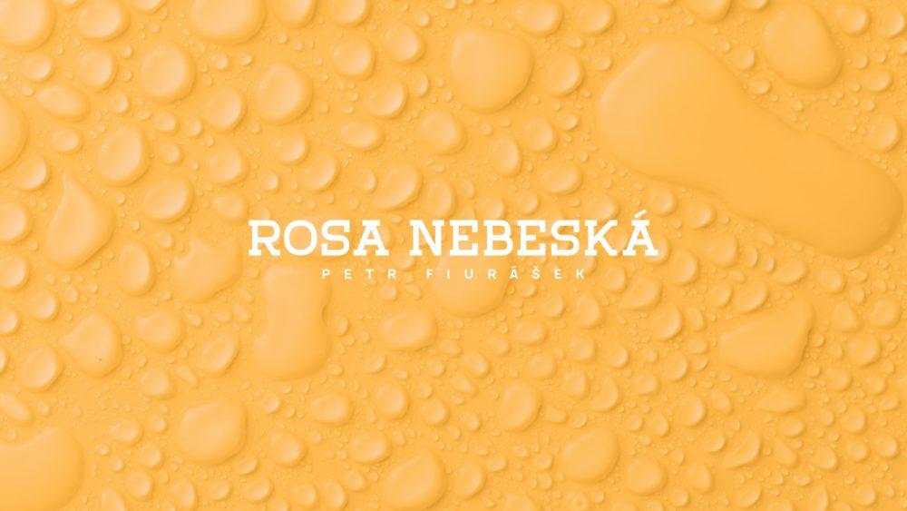 Rosa nebeská